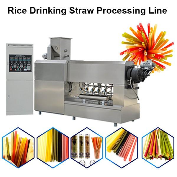 Automated Systems Edible Rice Flour Drinking Straw Making,Straws Extruder #1 image