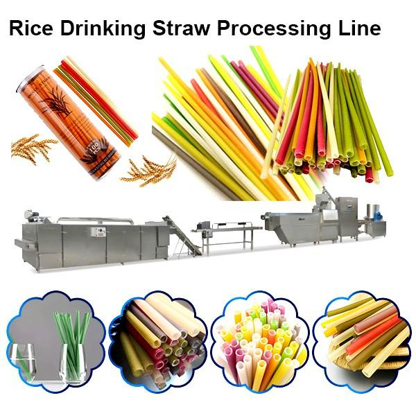 Extrusion Process Spaghetti Straws Making Machine With Plant Fibers Resin As Raw Materials #1 image