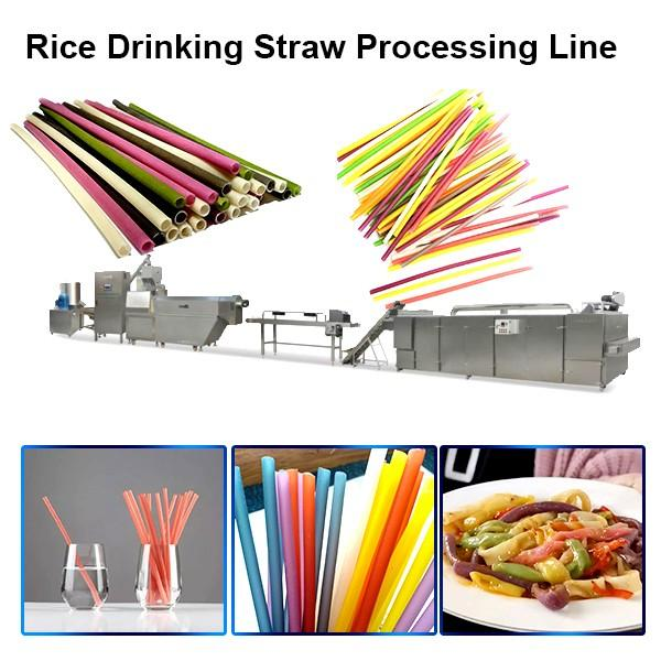 High Efficiency Automatic Pasta Drinking Straws Extruder With Smart Control #1 image