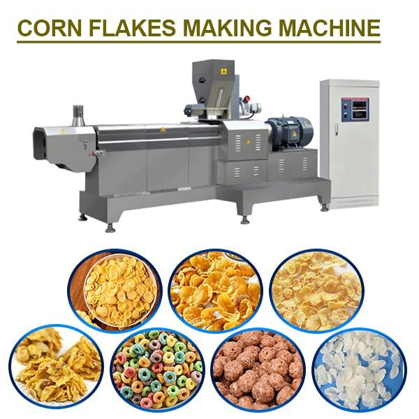 High Speed Low Energy Corn Flakes Making Machine For Fruit-Oat Chips #1 image
